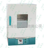 干烤**箱热气氛消毒箱厂家 GRX-9123A