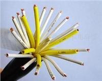 阻燃控制电缆KYYP22-低烟无卤阻燃通信电缆WDZ-HYA 低烟无卤阻燃通信电缆WDZ-HYA