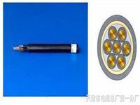DJYVVP双层护套电缆 DJYVVP双层护套电缆