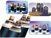 电缆-PTYA23-61芯 电缆-PTYA23-61芯