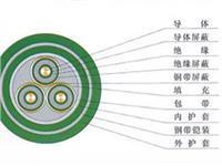 YJV交联聚乙烯绝缘聚乙烯护套电力电缆 YJV交联聚乙烯绝缘聚乙烯护套电力电缆