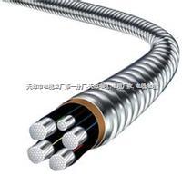 HYA23-500*2*0.4地区电缆 HYA23-500*2*0.4地区电缆