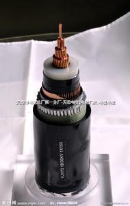 高压变台引线JKLGYJ/Q-10KV-25 高压变台引线JKLGYJ/Q-10KV-25