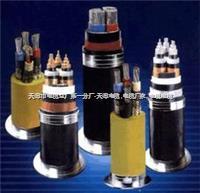 集束线JKYJ-10KV-16 集束线JKYJ-10KV-16