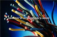 铁路信号电缆PTYA23-28芯 铁路信号电缆PTYA23-28芯