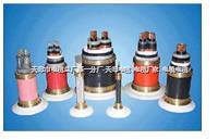铁路信号电缆PTYA23-52芯