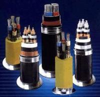 PTYY 铁路信号电缆_4*1.0规格 PTYY 铁路信号电缆_4*1.0规格