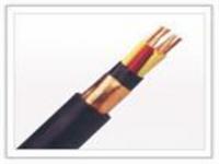 485铠装屏蔽双绞线ASTP-120  18AWG基本用途 485铠装屏蔽双绞线ASTP-120  18AWG基本用途