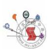 SBW,铠装式一体化温度变送器 SBW
