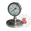 Y-150A/Z/MF(B)/316,不锈钢隔膜压力表 Y-150A/Z/MF(B)/316