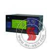 SWP-LCD,数字显示表 SWP-LCD