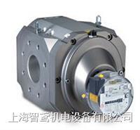 ELSTER膜式燃气表 BK-G1.6 - BK-G6系列