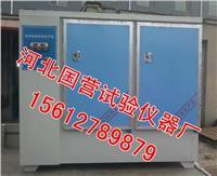 标准恒温恒湿养护箱 YH-60B型
