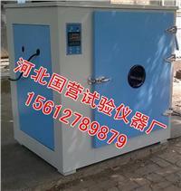 101-2型電熱鼓風幹燥箱