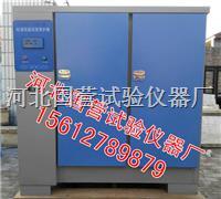 混凝土标准养护箱 YH-60