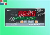 智能流量积算仪 HS-XMJA系列