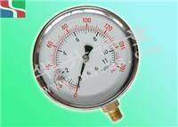 耐震不锈钢压力表 YN-BF系列