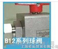低价销售派克球阀6000PSI-B系列应用 D1VW002ENJDLJ591