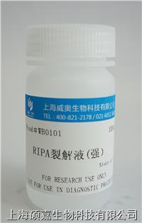 RIPA裂解液(强) 0101