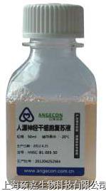 人源神经干细胞复苏液 hNSC-B1-005