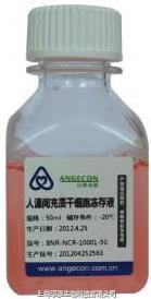 人源間充質干細胞凍存液 BNR-NCR-10001
