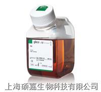 Fetal Bovine Serum, Qualified, Australia Origin 10099-141