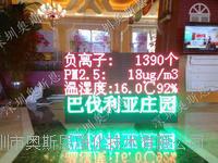 广西森林公园负氧离子大屏幕显示系统