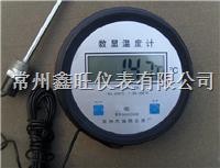 DTM-280电子显示温度计,电子显示温度表