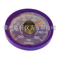 TM-710双金属温度计