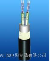 TTYC船用电缆 TTYC船用电缆