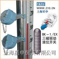 BX-1/EX三磁驱动型液位开关 BX-1/EX