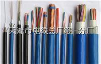 ZR-DJYPVR电缆,IA-DJYPVR本安电缆 ZR-DJYPVR电缆,IA-DJYPVR本安电缆