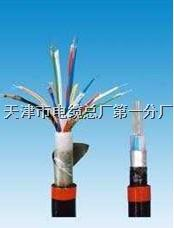 MKVV22电缆,安全标志编号MIA070523 MKVV电缆,安全标志编号MIA070523