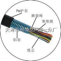 通信电缆HYA HYAT HYA53 HYA23