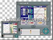 DX系列 无纸记录仪