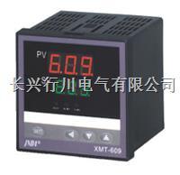 双路温度压力记录仪 XMTHR248