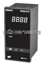 液晶温度记录仪 XMTHR148