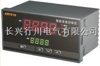 8路温度巡检仪 XMTJ801/802