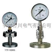 YMF10隔膜压力表