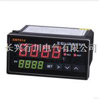 4路可编程温湿度打印记录仪 XMTHKPT
