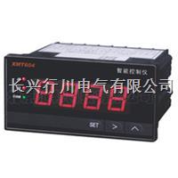 4路带通讯温湿度控制器 XMTHKK