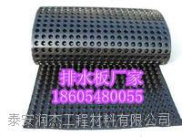 屋面绿化专用防水排水板 按要求定做