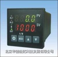 PID控制仪  XSC5