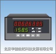 流量积算仪 XS