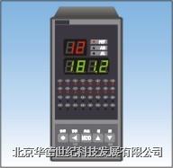 温度巡检仪 XSL