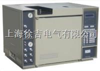 SC900 气相色谱仪  SC900 气相色谱仪