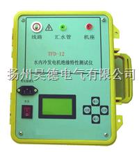 TFD-12水内冷发电机绝缘特性测试仪
