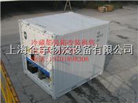 3米冷藏集装箱