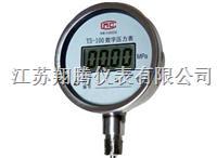 数显压力表 YS-100