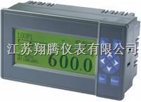 液晶显示调节仪 XT-100YJ